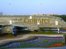 The Emirates A380 blossoms at Dubai Miracle Garden